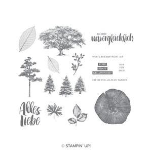 Stempelset Kraft der Natur aus der Produktreihe Poesie der Natur von Stampin Up